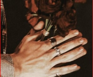 Harry Styles, rose, and hands image
