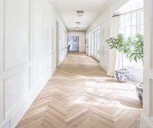 hallway, interior, and plants image