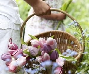 Bouquet from the garden