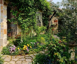 cottage, flower, and garden image