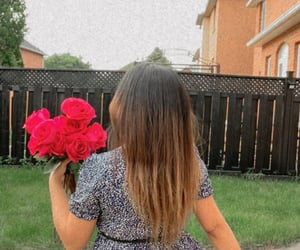 beauty, pink roses, and brunette image
