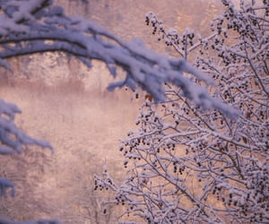 nature, pastel, and snow image