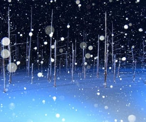 snow, snowing, and winter image