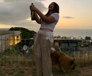 champagne, new years eve, and chowchow image