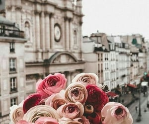 aesthetic, bouquet, and city image