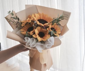 flowers, leaves, and sunflower image