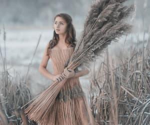 cinderella, fantasy, and enchanted image