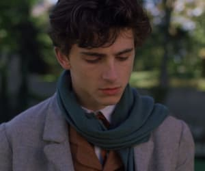 timothee chalamet, laurie, and little women image