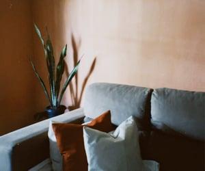 decor, inspiration, and plants image