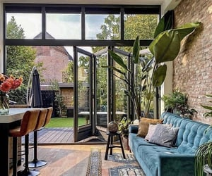 interior design, window, and flowers image