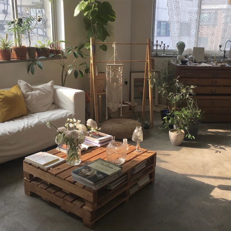 aesthetic, home, and plants image