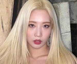 icon, kpop girls, and kim lip image