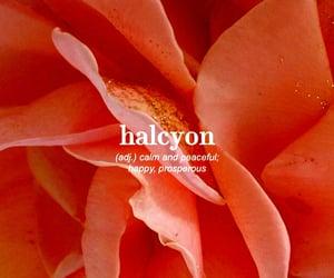 adjective, halcyon, and calm image