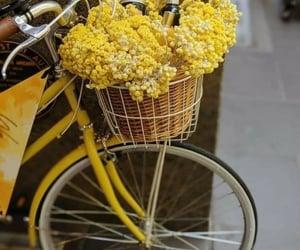 bike, fashion, and like image