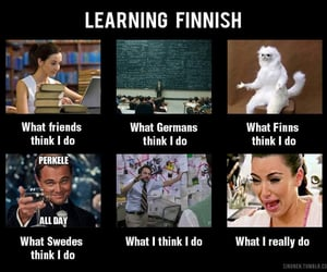 college, finnish, and funny image