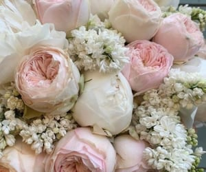bouquet, bridal, and roses image