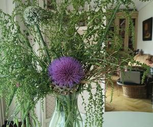 belleza, flores, and decoracion image