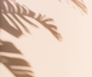 Nude, palm, and aesthetic image