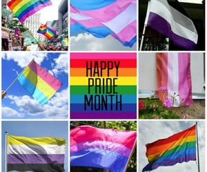 asexual, queer, and lgbt+ image