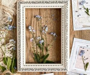 belleza, flores, and inspiracion image