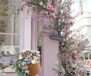 bike, shop, and flowers image