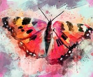 art, artwork, and butterflies image