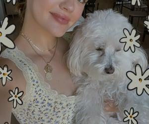 actress, dog, and gemini image