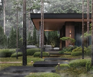 forest, green, and home image