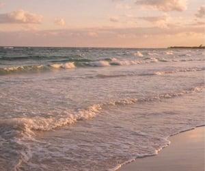 aesthetics, beach, and green image