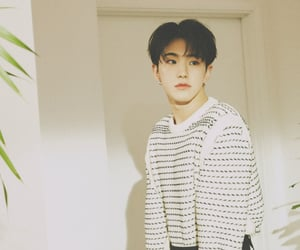 Seventeen, hoshi, and your choice image