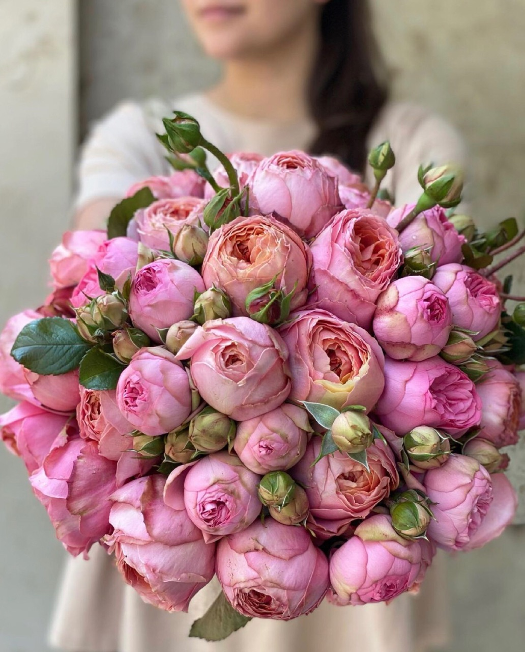 fashion, flowers, and royal image
