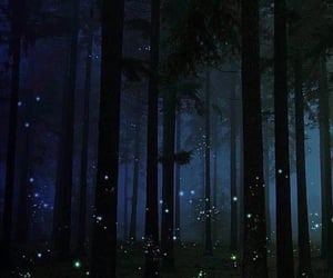 enchanted forest, fairy, and cottagecore image