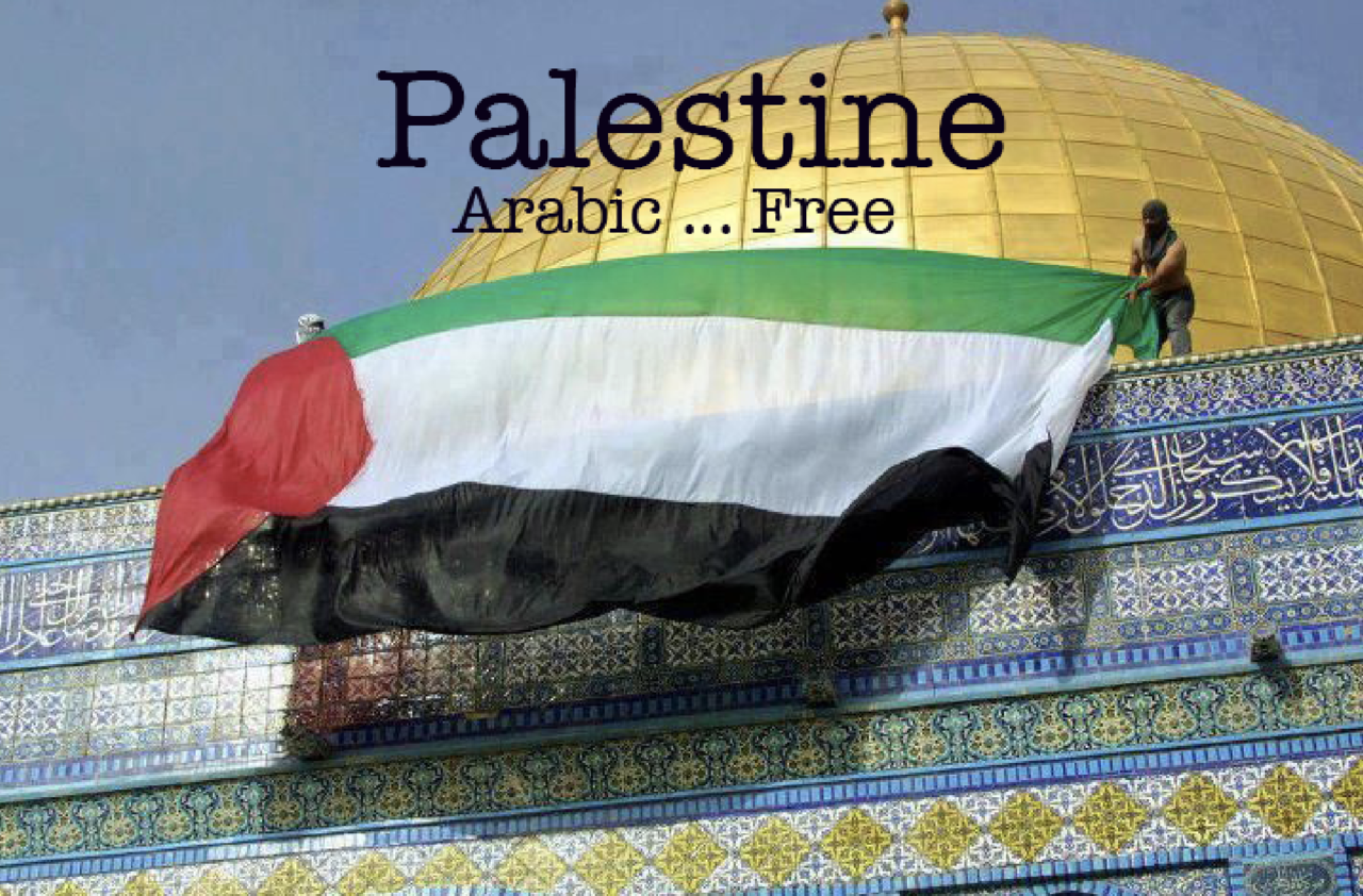 article and palestinearabic image