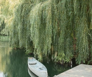 aesthetic, green, and boat image