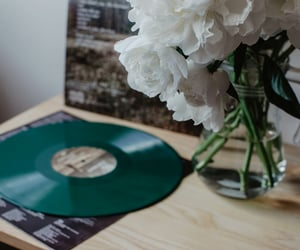lp, evermore, and peony image