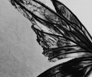 aesthetic and wings image