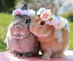 Adorable Best Bunnies ♡