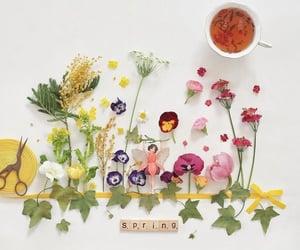 belleza, inspiracion, and primavera image