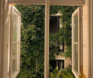 aesthetic, plants, and window image