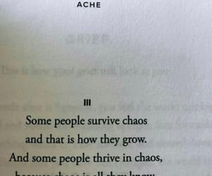 chaos, life, and survive image