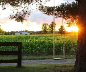 country, swing, and field image