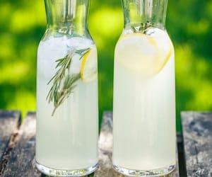 beverage, juice, and rosemary lemonade image