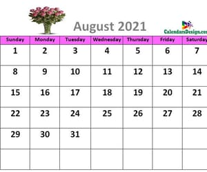 article and cute august 2021 calendar image