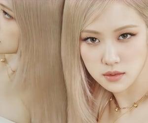 k-pop, rose, and blackpink image