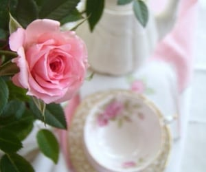floral, pink, and tea cup image