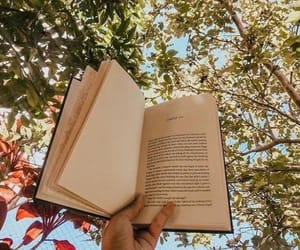 12 Free Outdoor Activities That Are Worth It - Society19 in 2020 | Book  aesthetic, Bookstagram inspiration, Nature aesthetic