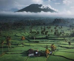 Dreamlike views in Bali, Indonesia