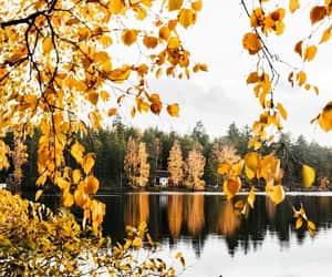 autumn, paisajes, and exteriores image