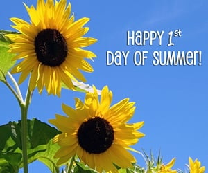 summertime, first day of summer, and sunflowers image