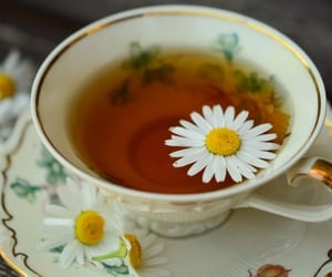 tea, drink, and flower image